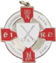 Red & Silver Hurling Medal